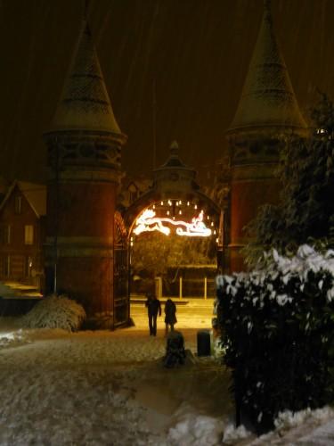 La neige la nuit 12. 2012 012.jpg